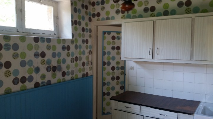 The old funky kitchen 2