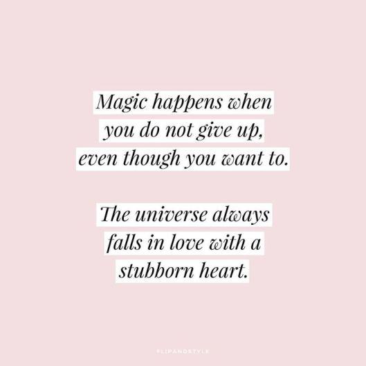 STUBBORN HEART QUOTE