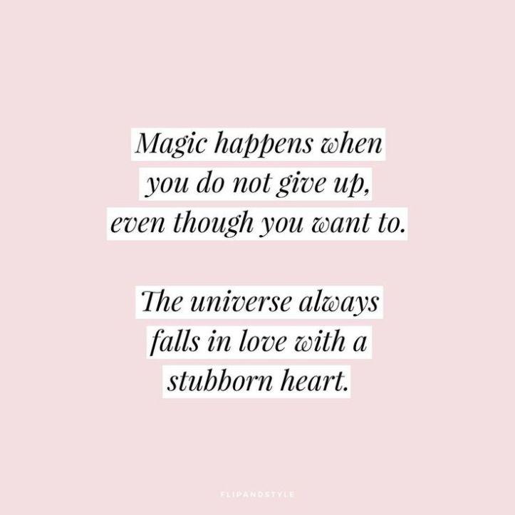 STUBBORN HEART QUOTE