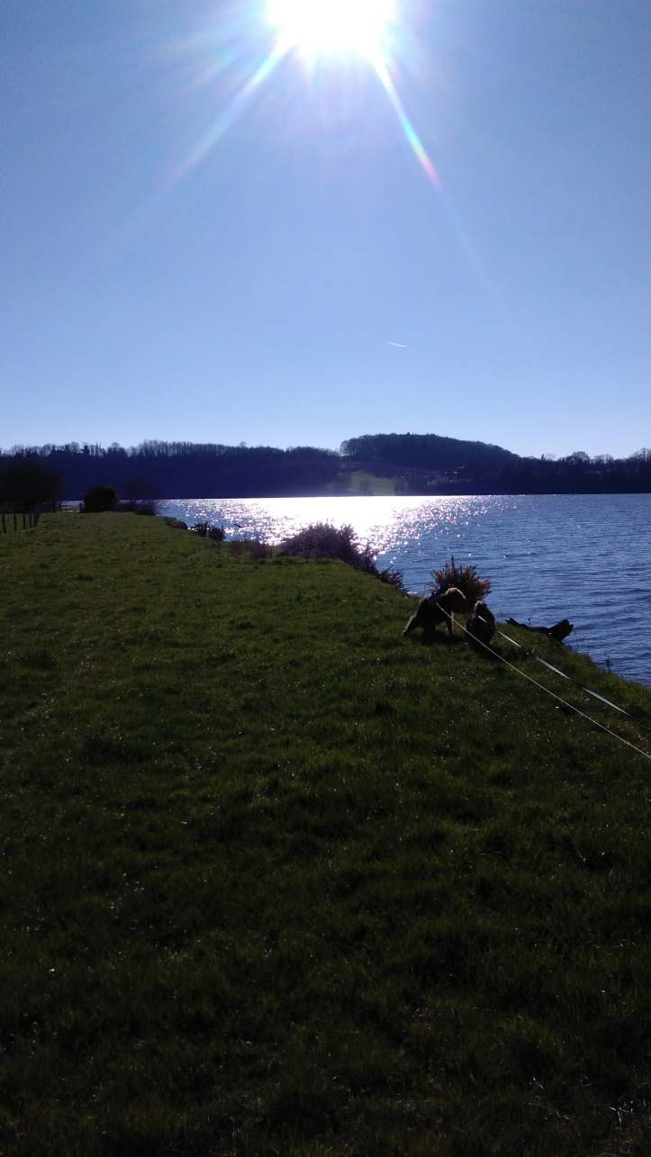 sun on the river winters day in feb
